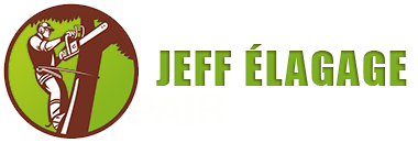 Jeff élagage